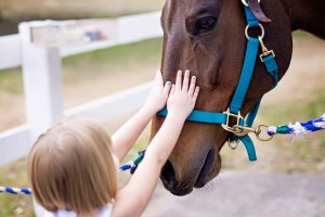 We Don't Just Horse Around: How We TRULY Impact Lives