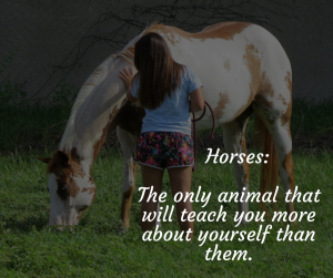 Horses Can Carry You To Healing Without Riding Them